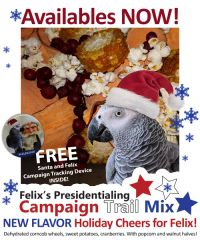 Holiday Cheers for Felix Campaign Mix