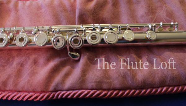 Di Zhao DZ-300 Intermediate Step Up Flute