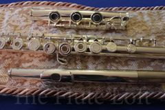 Di Zhao DZ-600 Intermediate-Advanced Flute