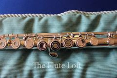 Di Zhao DZ-400 Intermediate Flute