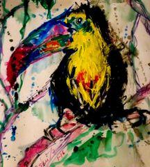 Toucan Tony