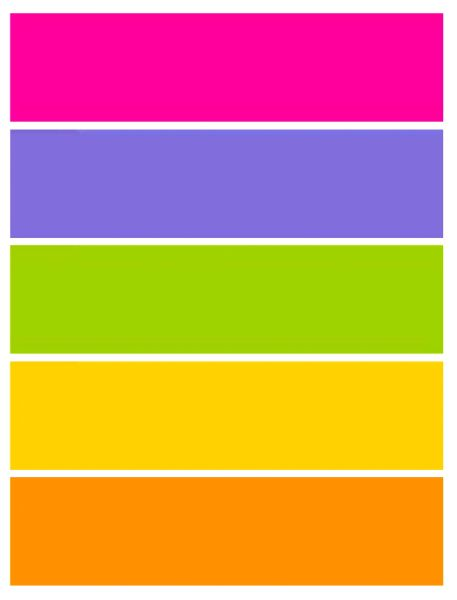 FCS Colored Dividers for Notebooks by Franklin Covey, DayTimer, Day Runner, and others