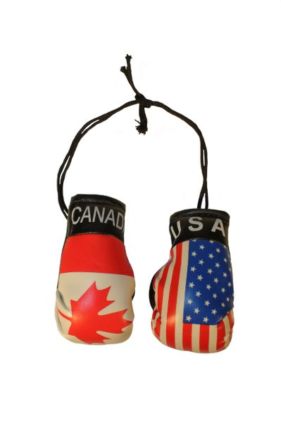 CANADA & USA Country Flags Mini BOXING GLOVES