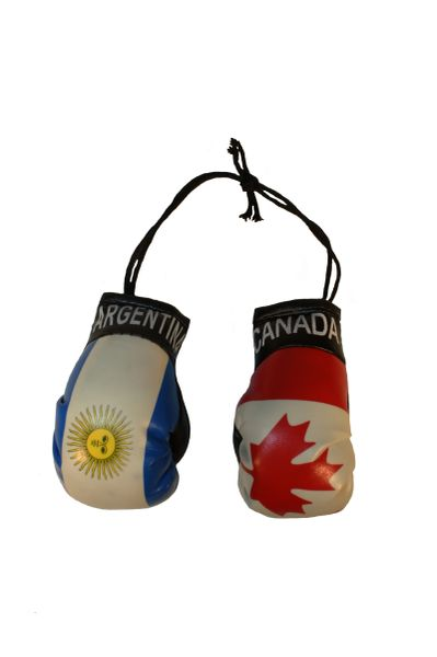 CANADA & ARGENTINA Country Flags Mini BOXING GLOVES