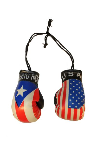 USA & PUERTO RICO Country Flags Mini BOXING GLOVES