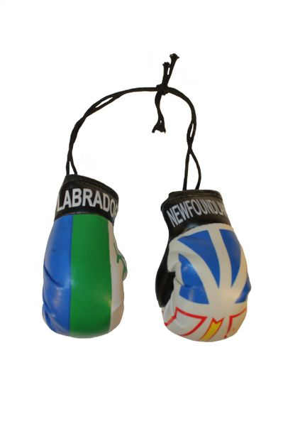 NEWFOUNDLAND & LABRADOR - CANADA Provincial Flags Mini BOXING GLOVES