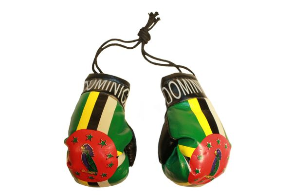 DOMINICA Country Flag Mini BOXING GLOVES