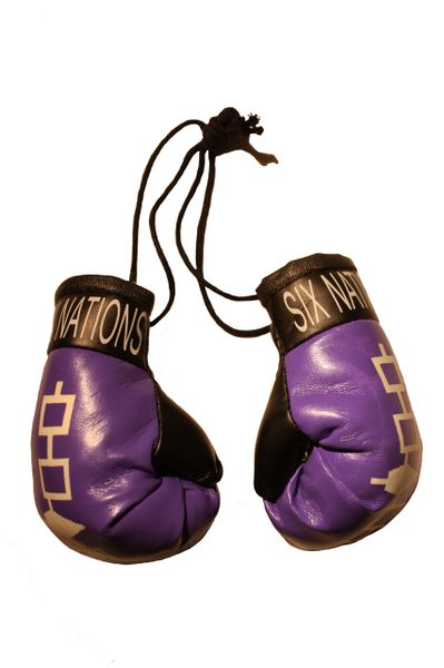 SIX NATIONS IROQUOIS Flag Mini BOXING GLOVES