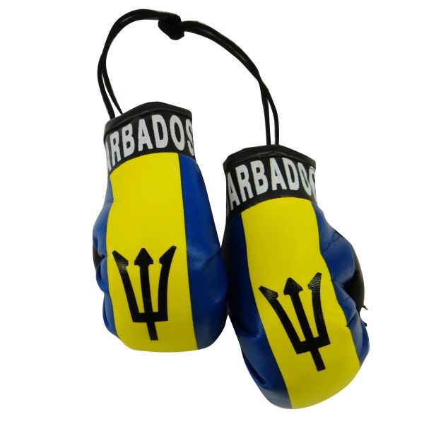 BARBADOS Country Flag Mini BOXING GLOVES