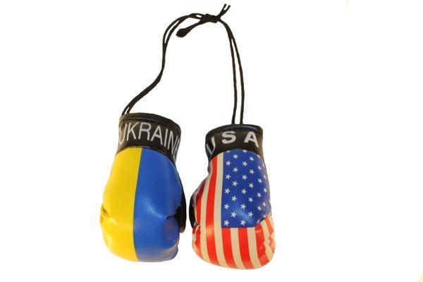 USA & UKRAINE Plain Country Flags Mini BOXING GLOVES