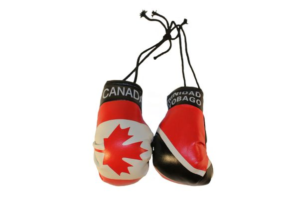 CANADA & TRINIDAD and TOBAGO Country Flags Mini BOXING GLOVES