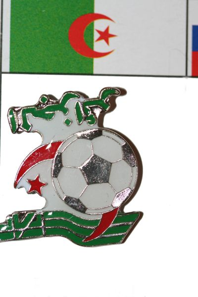 ALGERIA FIFA WORLD CUP SOCCER LOGO LAPEL PIN BADGE .. NEW AND IN A PACKAGE