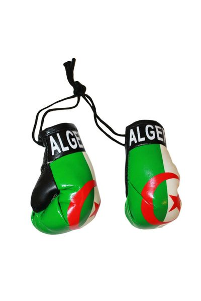 ALGERIA COUNTRY FLAG MINI BOXING GLOVERS .. HIGH QUALITY .. NEW AND IN A PACKAGE