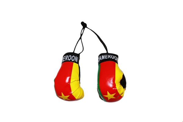 CAMEROON COUNTRY FLAG MINI BOXING GLOVERS .. HIGH QUALITY .. NEW AND IN A PACKAGE