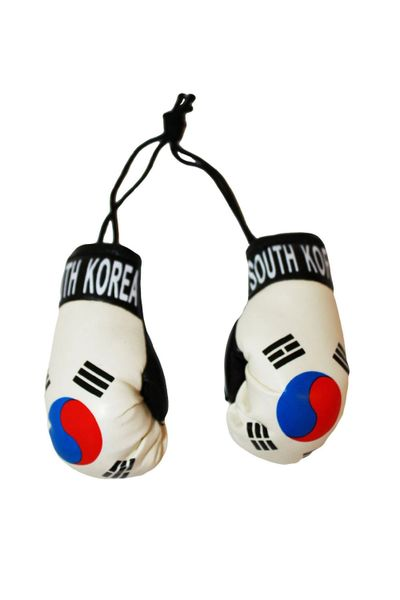 SOUTH KOREA COUNTRY FLAG MINI BOXING GLOVERS .. HIGH QUALITY .. NEW AND IN A PACKAGE