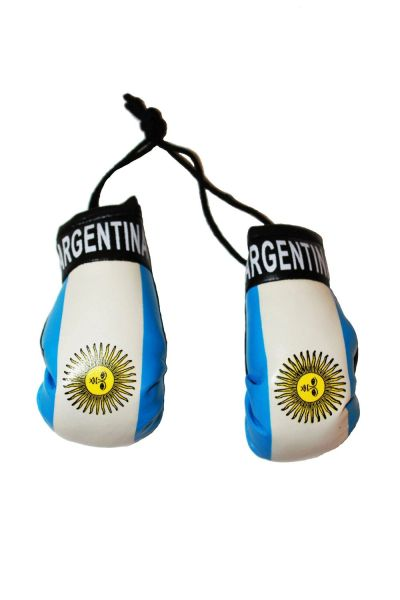 ARGENTINA COUNTRY FLAG MINI BOXING GLOVERS .. HIGH QUALITY .. NEW AND IN A PACKAGE