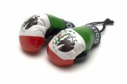 MEXICO COUNTRY FLAG MINI BOXING GLOVERS .. HIGH QUALITY .. NEW AND IN A PACKAGE