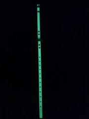1 Inch Glow In The Dark Day-Glo Collar