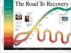 """Road to Recovery Poster (18"""" x 24"""")"""
