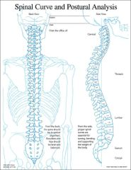 Spinal Curve and Posture Insert (50 A4 Sheets)