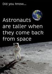 "Astronaut Poster (18"" x 24"")"