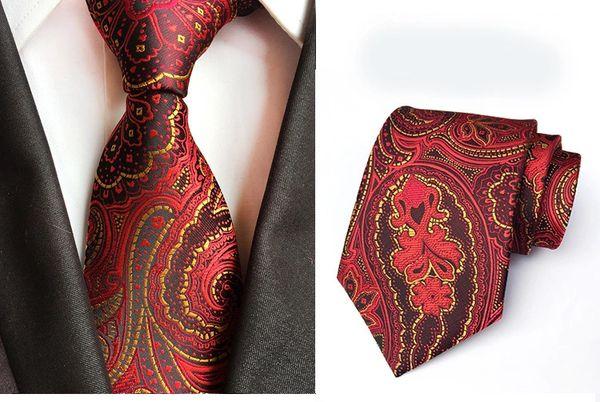 010 Red Wine Paisley Neck Tie
