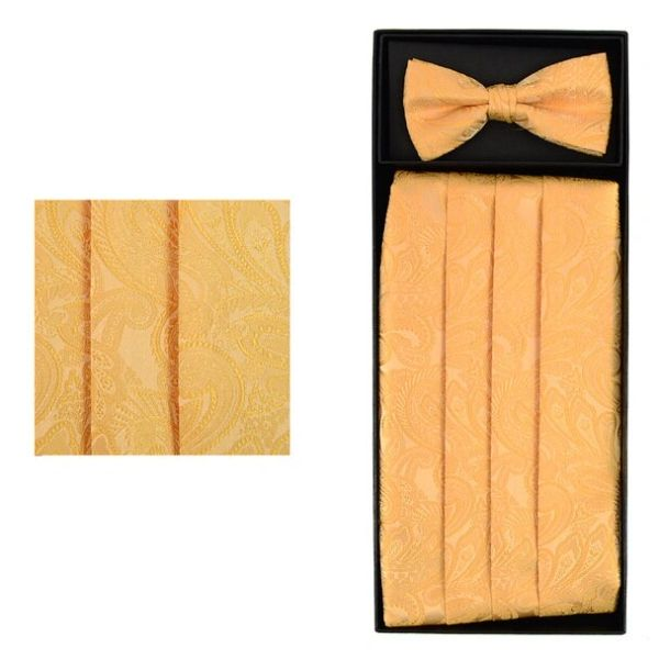 Paisley Design Cummerbund Tie Set