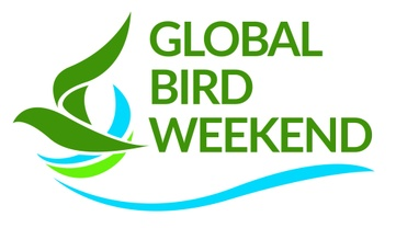 GLOBAL BIRDING.ORG EVENT 16, 17 AND 18 OCTOBER 2020