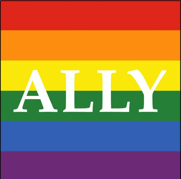Ally - Large