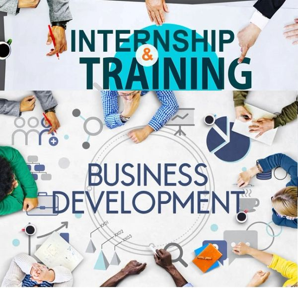 Business Development Internship Training Program