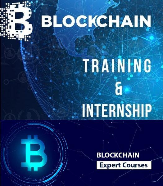 Blockchain Developer Internship Training Program