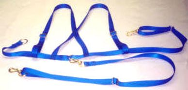 # 148 A SAFETY HARNESS