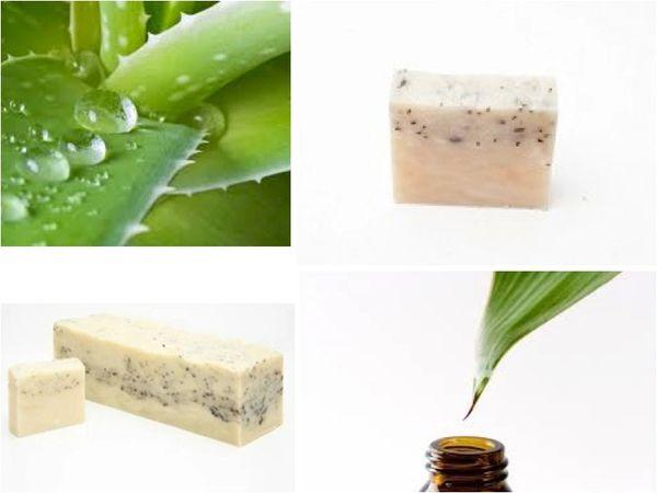 Tea Tree & Mint Shampoo/Beard Bar