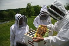 Getting Dirty down on the farm!...FREE BEEKEEPING/POLINATION CLASS
