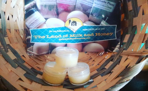 Lemon blackberry sage lip balm tubs