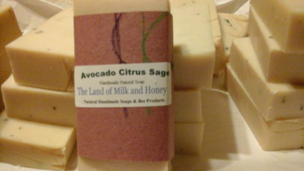 Avocado Citrus Sage handmade soap