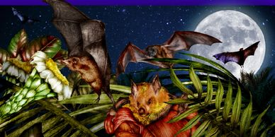Watch the bat video on my blog, Get a free copy  of my bat book.