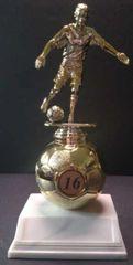 Soccer Ball Riser