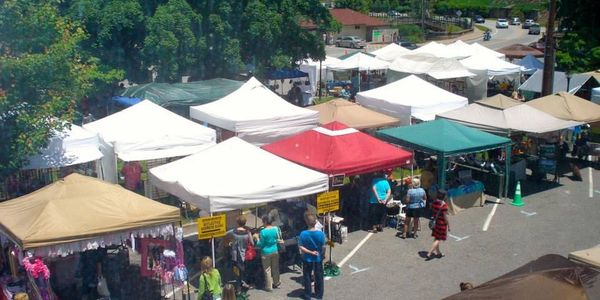 2021 Lake Lure Spring Arts and Crafts Festival