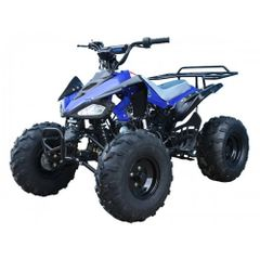 "125cc Youth Sport 8"" TaoTao"