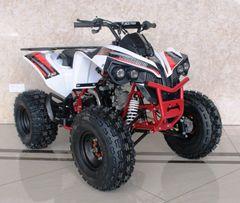 ACE C125 CONQUEROR ATV