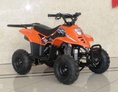 ACE D110 ATV