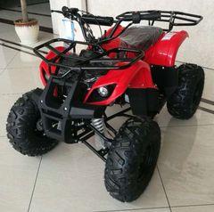 ACE B125 ATV