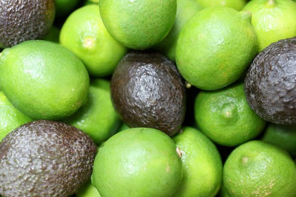 Avocados and Limes Deal