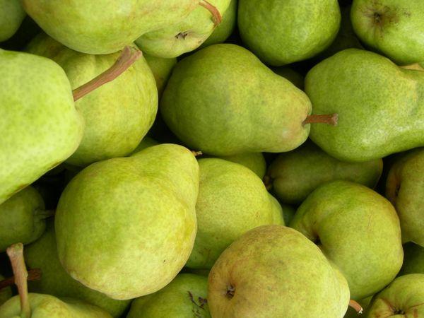 Barlett Pears - Paper bag