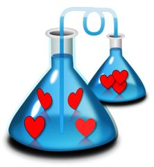 The Meaningful Purpose Couple: The Love Lab