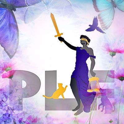 Piccone Law Firm LLC logo with butterflies and flowers
