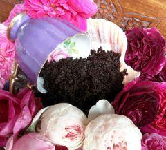 Aromatherapeutic Botanical Natural Body Scrub | Coffee ~ Rose ~ Pomegranate ~ Peppermint ~ Rose Geranium ~ Acai Berry | Homegrown Botanicals ~ Love