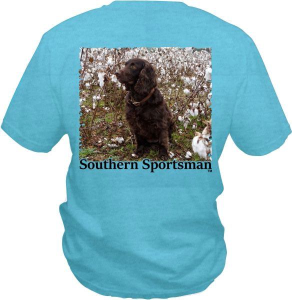 Boykin Spaniel In Cotton Field on our Custom Dyed Mint Green Short Sleeve, Long Sleeve, and Hoodies