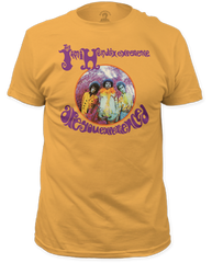 Jimi Hendrix Are You Experienced Ginger Short Sleeve Adult T-shirt